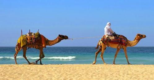 Morocco Adventure Vacation