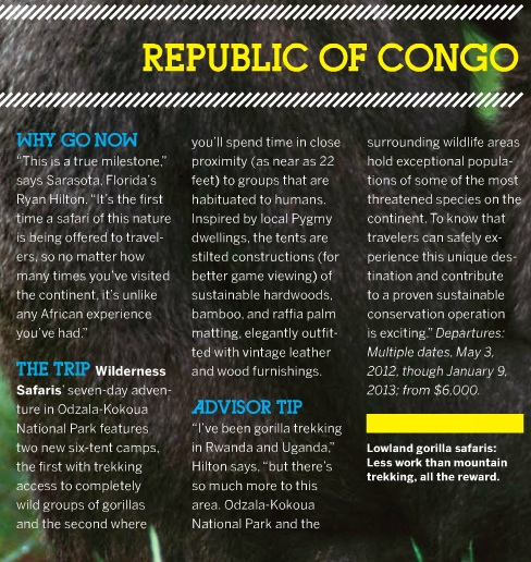 congo, vacation, africa, travel, central africa, gorillas