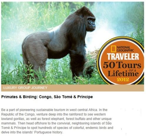 Brazzaville, Odzala-Kokoua National Park, São Tomé, Príncipe, africa, congo, travel, birding, primates
